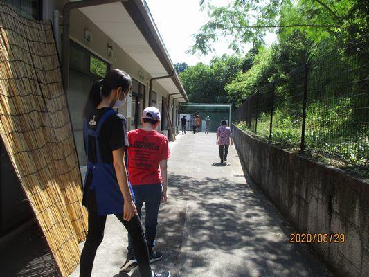 6/29 散歩_a0154110_08562294.jpg