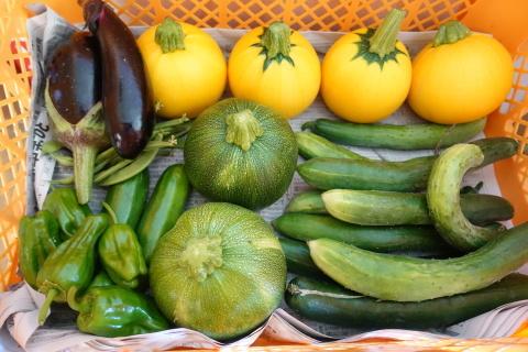 シェフの無農薬野菜を使って_f0013323_12032812.jpg