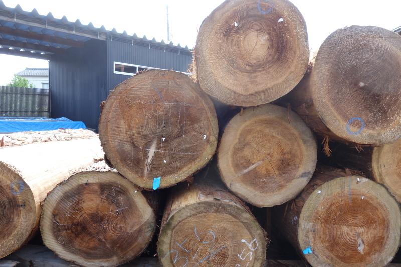 杉の赤身と白太 ウッドデッキ_e0156341_07502440.jpg