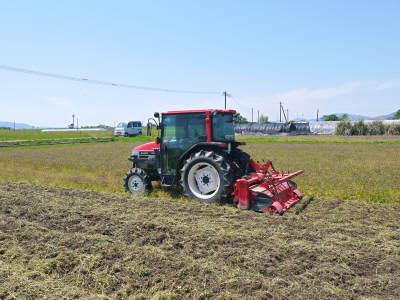 砂田のこだわりれんげ米 田植えの様子(2020) 前編:今年も変わらずれんげを有機肥料にした田んぼです_a0254656_17572728.jpg