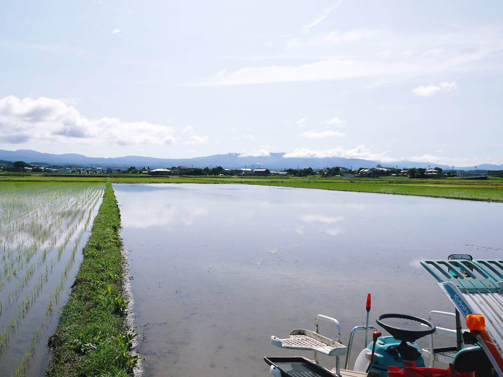 砂田のこだわりれんげ米 田植えの様子(2020) 前編:今年も変わらずれんげを有機肥料にした田んぼです_a0254656_18061666.jpg
