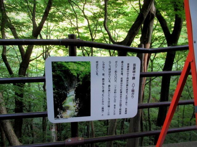 名勝 吾妻峡 * 梅雨の晴れ間、緑の渓谷に涼む♪_f0236260_21005051.jpg
