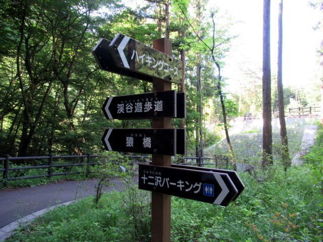 名勝 吾妻峡 * 梅雨の晴れ間、緑の渓谷に涼む♪_f0236260_21093016.jpg