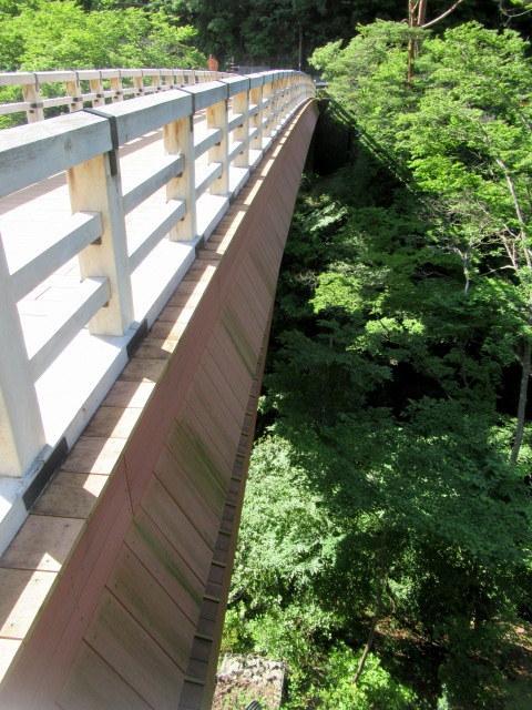 名勝 吾妻峡 * 梅雨の晴れ間、緑の渓谷に涼む♪_f0236260_21114239.jpg