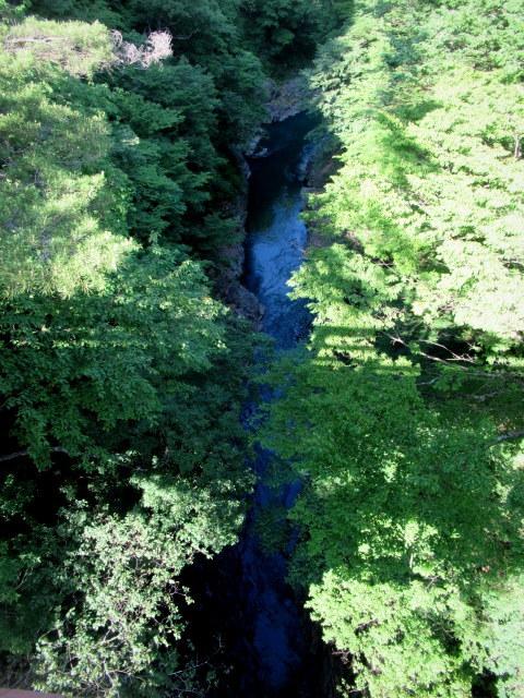 名勝 吾妻峡 * 梅雨の晴れ間、緑の渓谷に涼む♪_f0236260_21131479.jpg