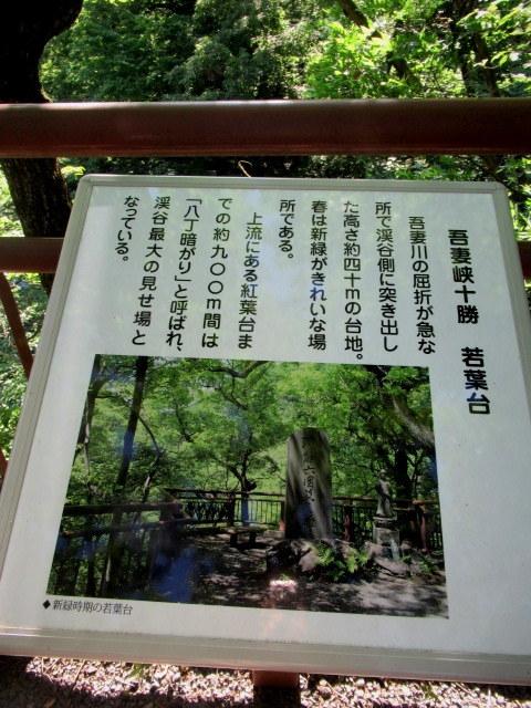 名勝 吾妻峡 * 梅雨の晴れ間、緑の渓谷に涼む♪_f0236260_21141334.jpg