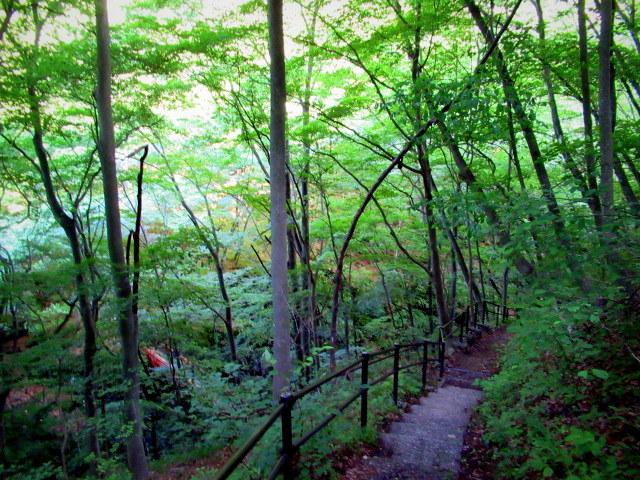 名勝 吾妻峡 * 梅雨の晴れ間、緑の渓谷に涼む♪_f0236260_21172621.jpg