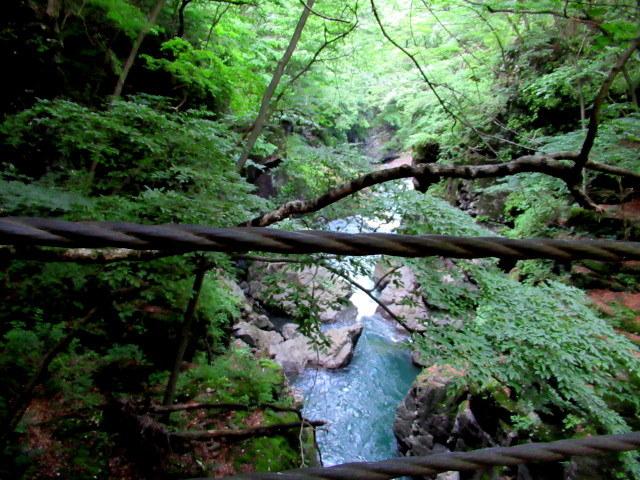 名勝 吾妻峡 * 梅雨の晴れ間、緑の渓谷に涼む♪_f0236260_21233337.jpg
