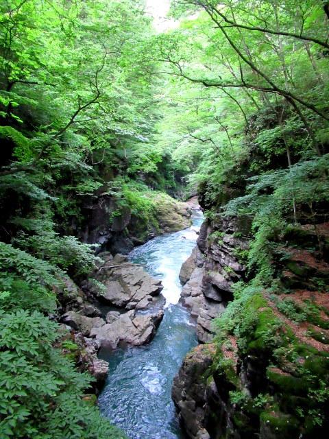 名勝 吾妻峡 * 梅雨の晴れ間、緑の渓谷に涼む♪_f0236260_21242345.jpg
