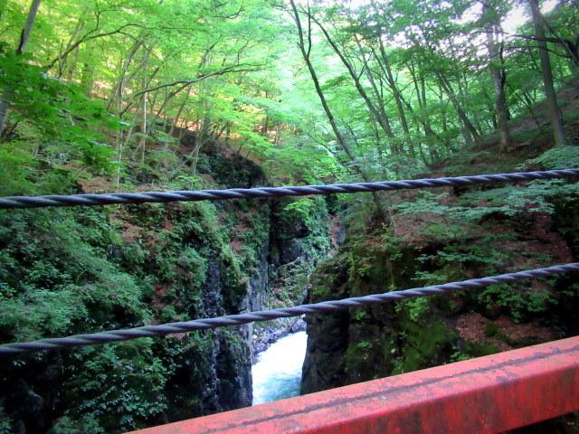 名勝 吾妻峡 * 梅雨の晴れ間、緑の渓谷に涼む♪_f0236260_21254435.jpg