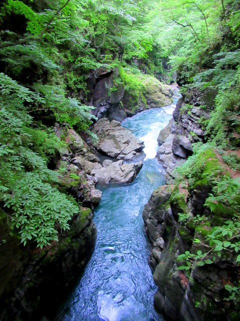 名勝 吾妻峡 * 梅雨の晴れ間、緑の渓谷に涼む♪_f0236260_21303217.jpg