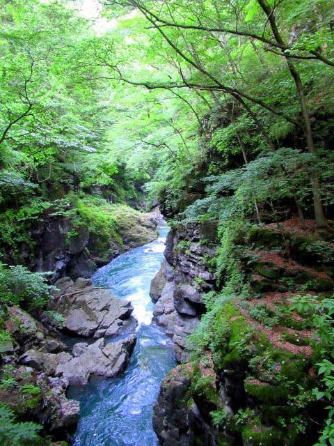 名勝 吾妻峡 * 梅雨の晴れ間、緑の渓谷に涼む♪_f0236260_21305765.jpg