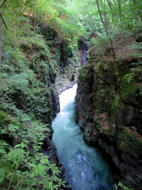 名勝 吾妻峡 * 梅雨の晴れ間、緑の渓谷に涼む♪_f0236260_21311972.jpg