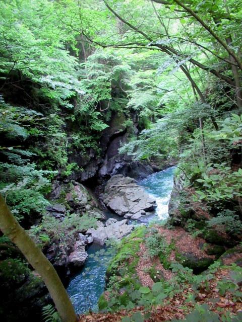 名勝 吾妻峡 * 梅雨の晴れ間、緑の渓谷に涼む♪_f0236260_21320504.jpg