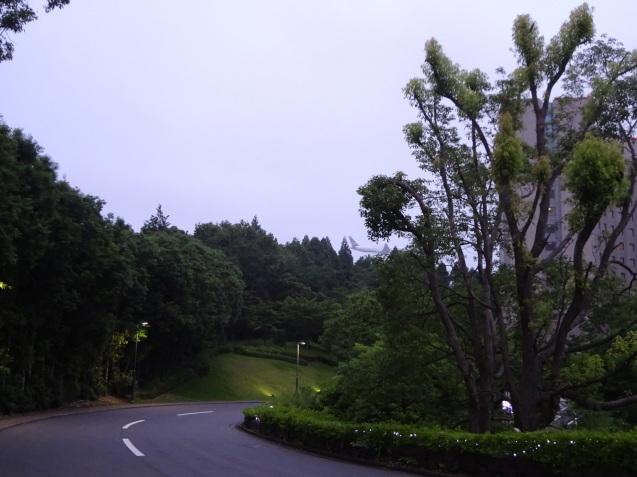 ヒルトン成田@covid-19 quarantine period (2)(+「レストラン松原」)_b0405262_20422102.jpg