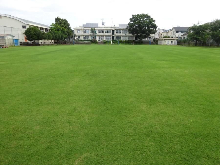 R2.6月の13小校庭芝生その2_f0059673_00173210.jpg