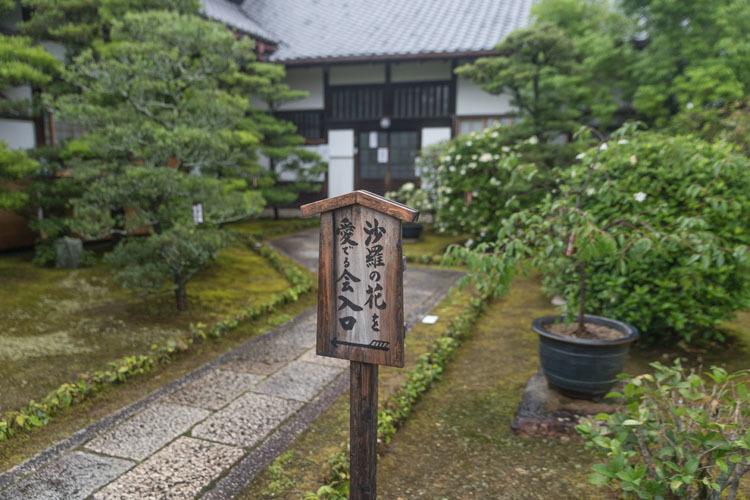 東林院(妙心寺塔頭)_e0051888_00324263.jpg