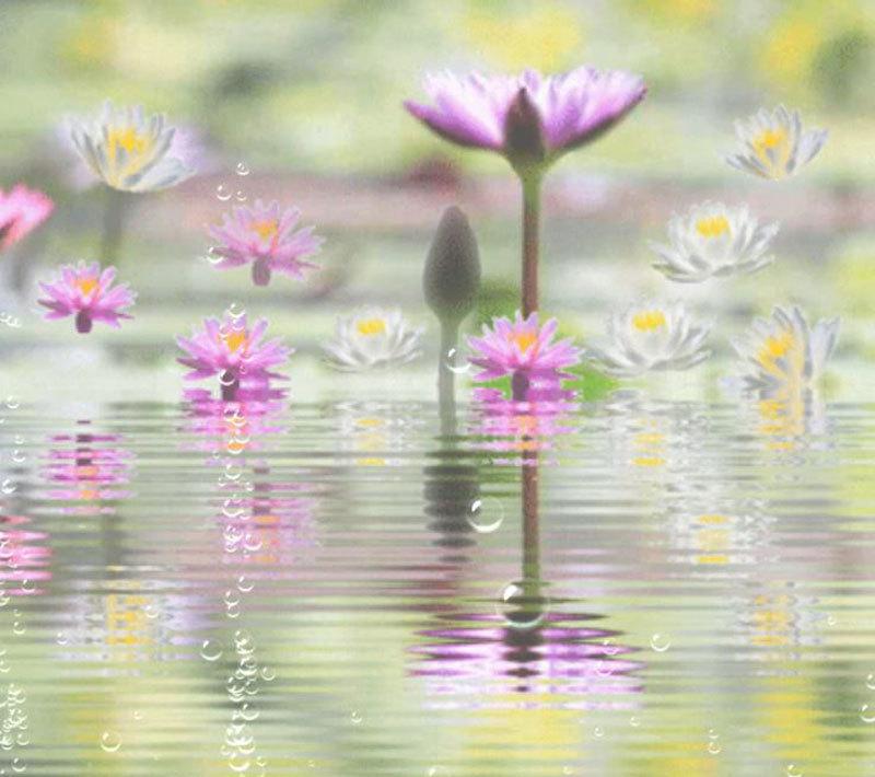 水滴_d0162994_07102634.jpg