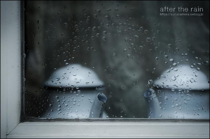 雨上がり_f0100215_19240582.jpg