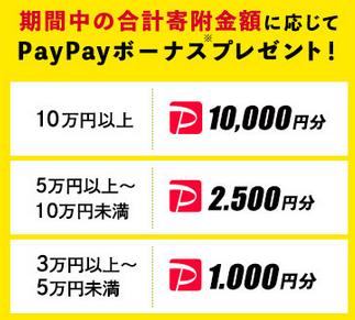 ふるさと納税で最大10%PayPay還元!もちろん返礼品も貰える _d0262326_20185351.png