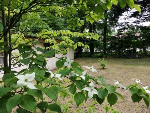 ラ・メゾン軽井沢(lamaisonkaruizawa)さんのお庭(^^)_d0331029_22145674.jpg