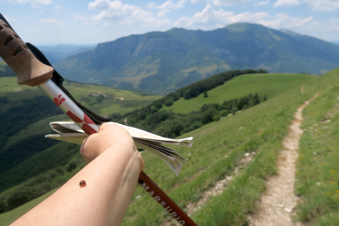 眺めよし攻撃びっくり魔女の山 Monte della Strega_f0234936_6443717.jpg
