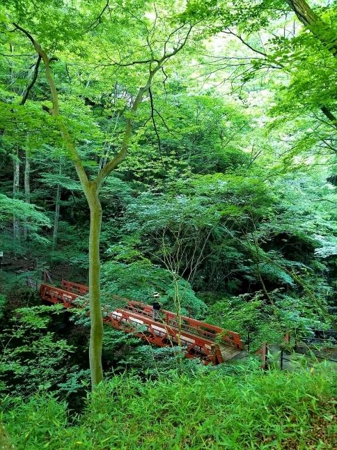 名勝 吾妻峡 * 梅雨の晴れ間、緑の渓谷に涼む♪_f0236260_01294025.jpg