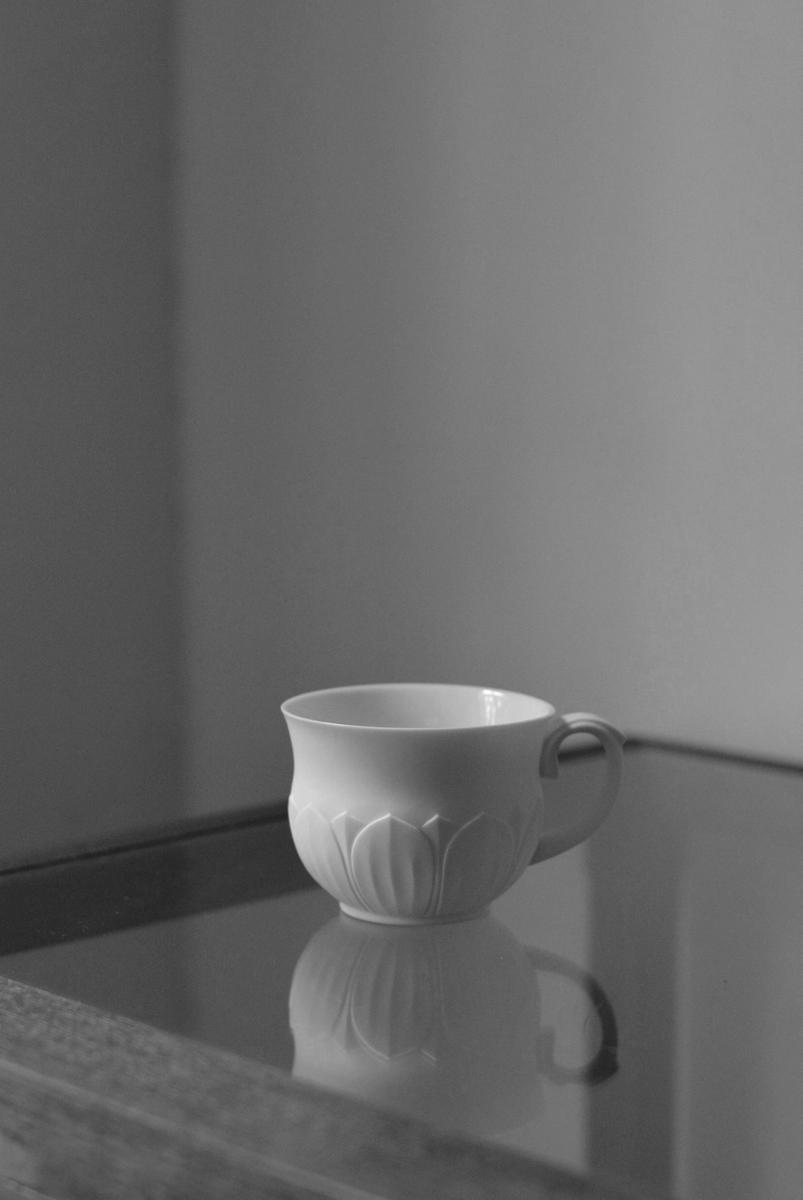 「若杉聖子展 PORCELIAN LOTUS」ご案内_d0087761_17345592.jpg