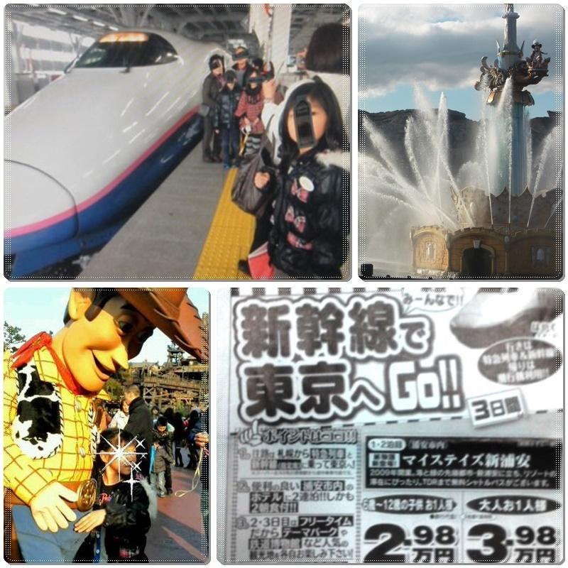 今年は諦めた「東京ディズニーリゾート」_b0236665_10391710.jpg