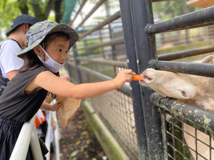 動物園とかBBQとか。_a0127284_05415521.jpg