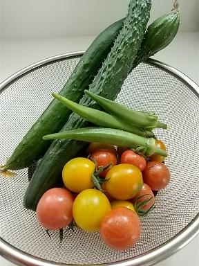 美味しい野菜生活_d0043390_19453431.jpg