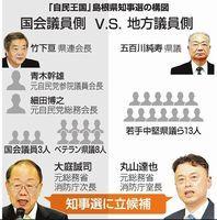 益田市長選挙_e0128391_12321329.jpg