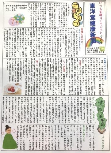 東洋堂新聞、7月号できました。_d0142498_16393557.jpeg