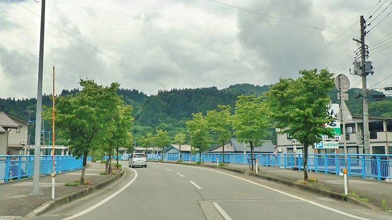 浦佐の街路樹について話し合う機会がありました_c0336902_20293464.jpg