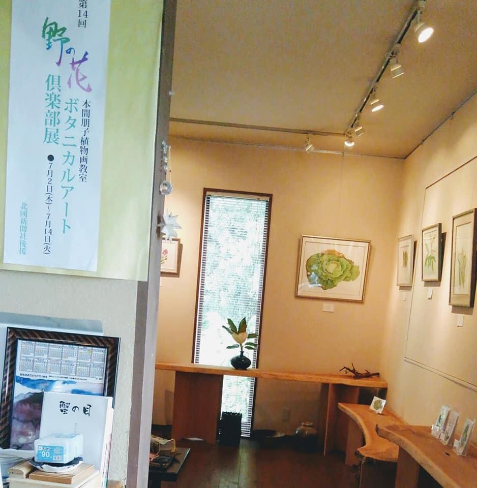第14回野の花ボタニカルアート倶楽部展が始まりました~!_e0182207_19304665.jpg