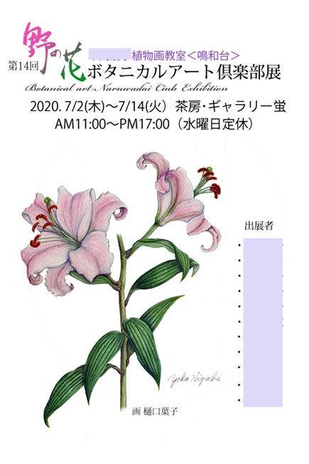 第14回野の花ボタニカルアート倶楽部展が始まりました~!_e0182207_19340941.jpg