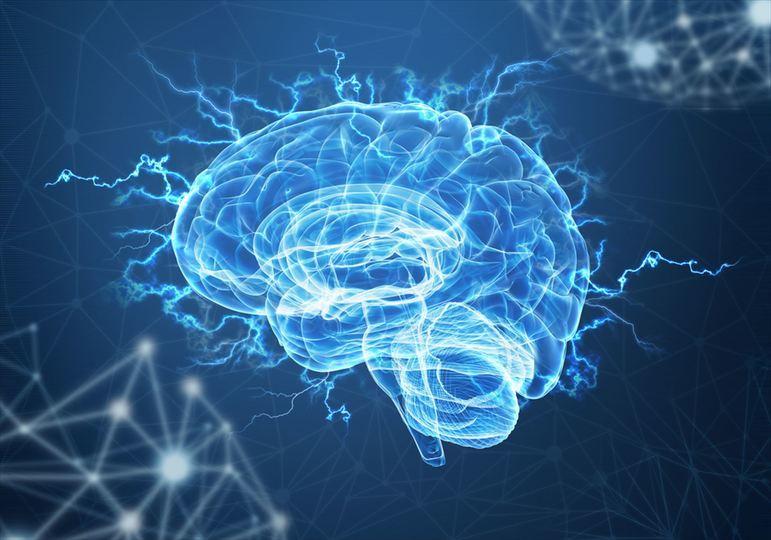 『成熟脳 ~ 脳の本番は56歳から始まる~』_c0125114_19192365.jpg