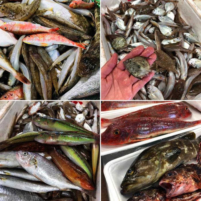 地魚で創る珠玉のスープ_b0340837_12411842.jpg