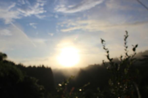 ハートの太陽。。♡_a0174458_23543693.jpg