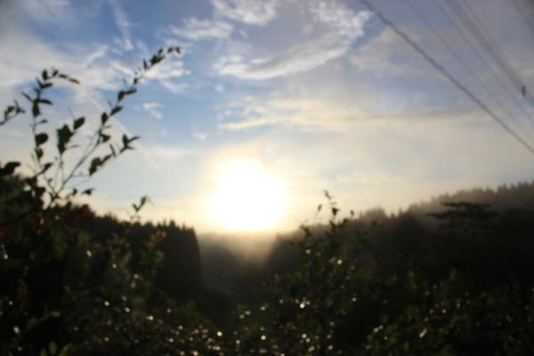ハートの太陽。。♡_a0174458_23583206.jpg
