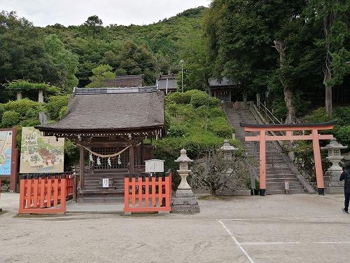 白鬚神社_f0106664_19244204.jpg
