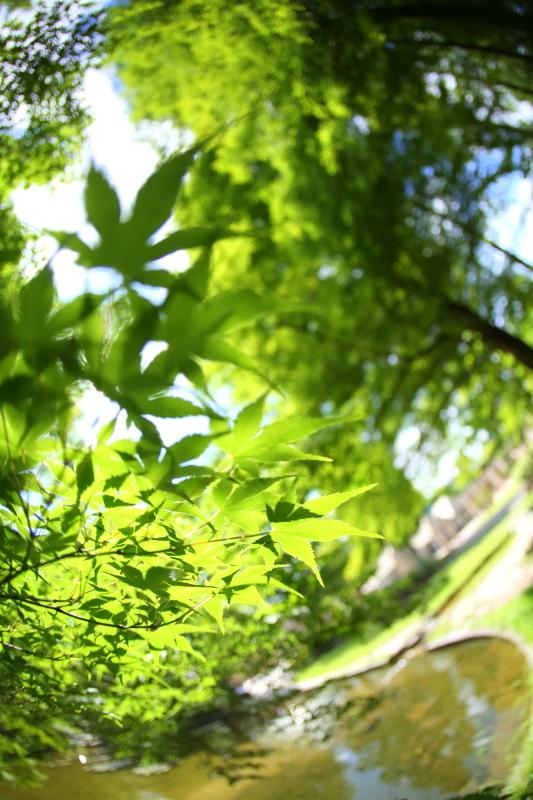 久屋大通庭園フラリエ_f0367980_21080597.jpg