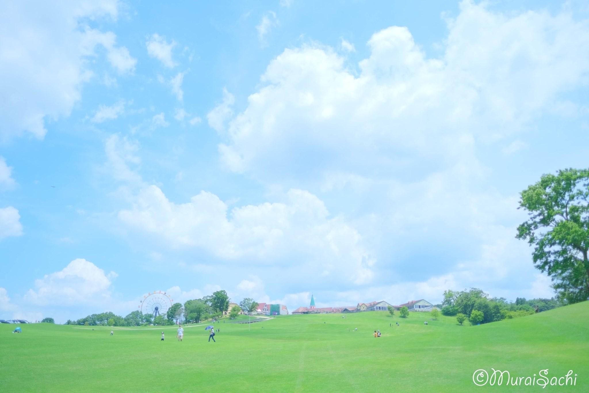 ある日のオンラインサロンの記事 紫陽花編_c0073387_06235610.jpg