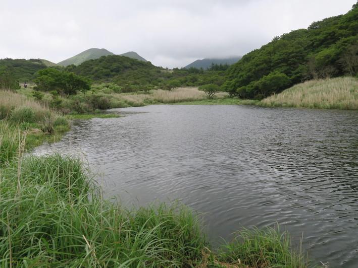 雨ケ池ピストン 2020.07.01(水)_a0166196_10505117.jpg