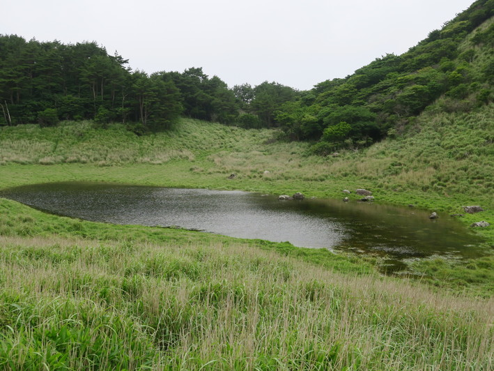 雨ケ池ピストン 2020.07.01(水)_a0166196_10511943.jpg