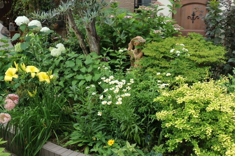 初夏のお花が次々と~_a0123003_22401490.jpg