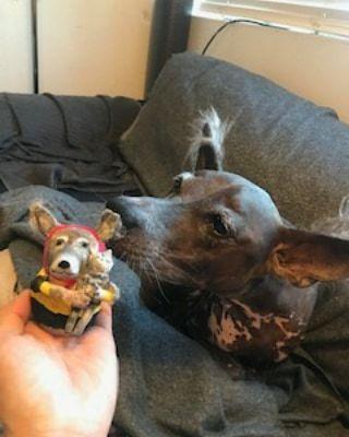 張り子人形オーダー~犬とミミズク_f0208315_09221781.jpg