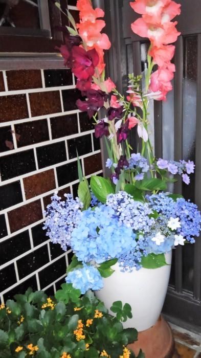 ■園芸【我が家のプランター栽培の花達色々です♪】畑もお花だらけですが^^_b0033423_23500719.jpg