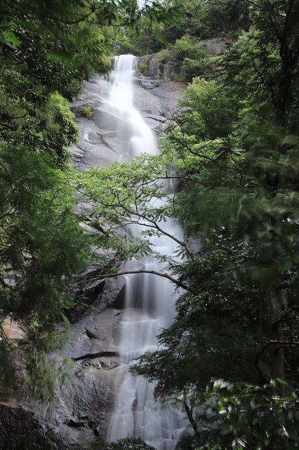 雨上がりの清滝(撮影:6月20日)_e0321325_13173838.jpg