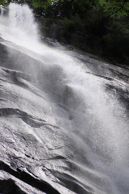 雨上がりの清滝(撮影:6月20日)_e0321325_13175981.jpg